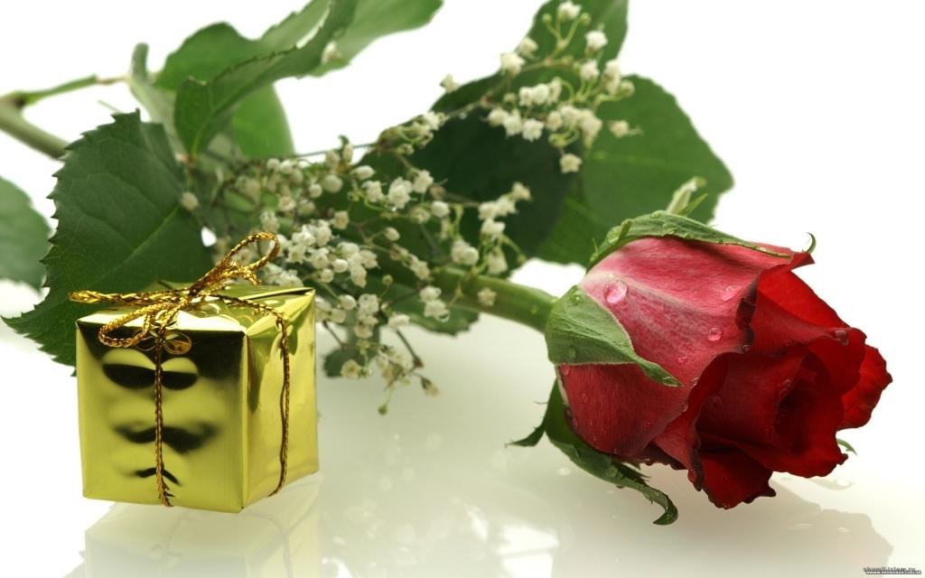 Поздравление к подарку цветы розы